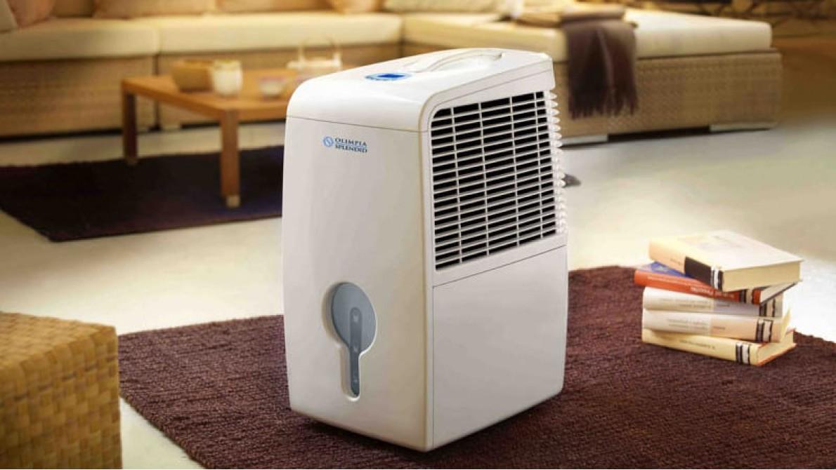 Очищаем воздух отрицательно заряженными ионами кислорода